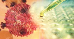 Gravioala oder Chemotherapie